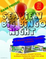 Big Bingo Night